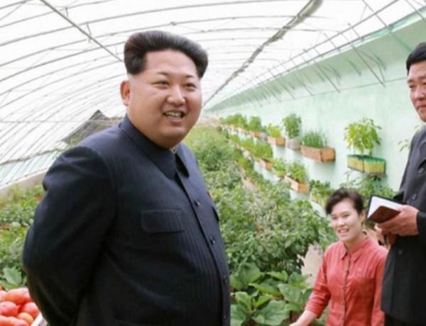 kim-jong-un-skype